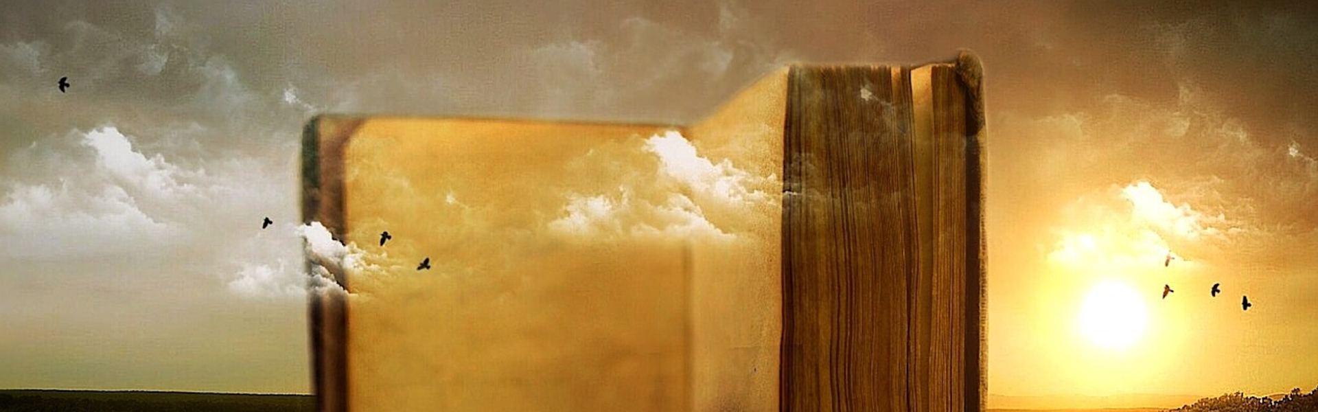 Feng Shui - Die Kraft des Wassers in Balance und Harmonie